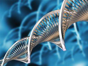 20131023093343_biotecnologia