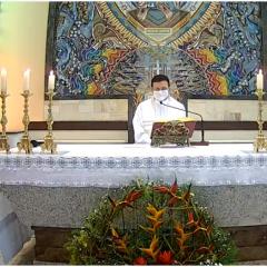 Acompanhe diariamente missas na intenção da Semana Nacional da Vida
