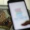 Impulso para a evangelização das famílias nos meios digitais